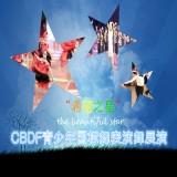 中国国际标准舞总会团体会员费用缴纳
